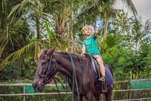 Boy Horseback Riding, Performing Exercises On Horseback
