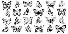 Set  Filigree Butterflies
