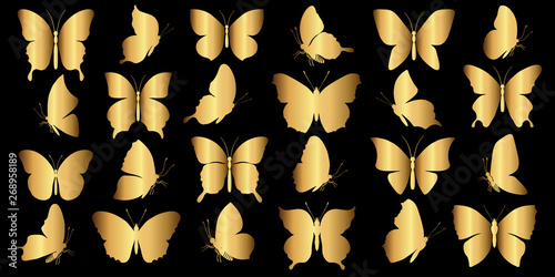 Fotografie, Obraz  set of gold butterflies