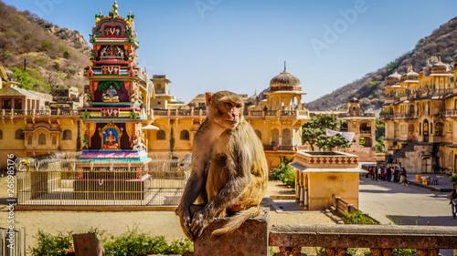 Spoed Fotobehang Aap Jaipur rajasthan India