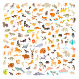 Fototapeta Fototapety na ścianę do pokoju dziecięcego - Mammals of the world. Animals and birds cartoon style, mammals icon. Animals vector. Extra big animals set. Vector illustration, isolated on a white background