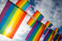 Gay Pride Rainbow Flag Bunting...