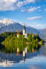 Church On Island Reflected In Waters Of Bled Lake