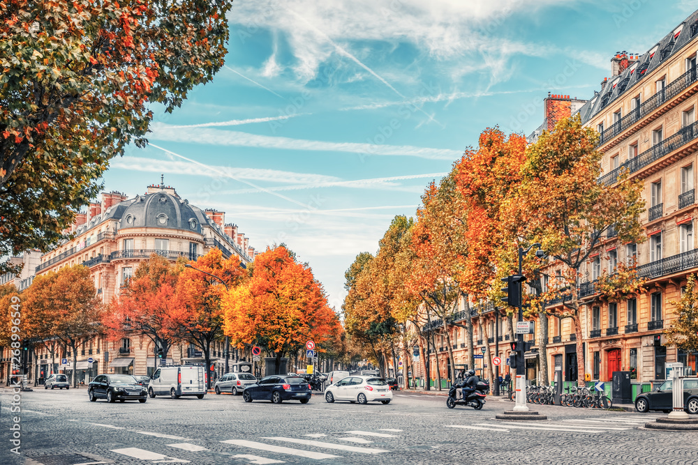 Fototapety, obrazy: Streets of Paris, France. Blue sky, buildings and traffic.