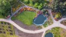 Aerial View F Green Flower Bed In The Form Of A Maze. Drone Shot. Natural Summer Spring Background