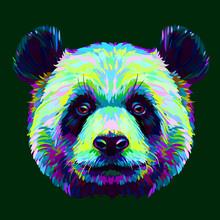 Panda. Graphic, Abstract, Hand...