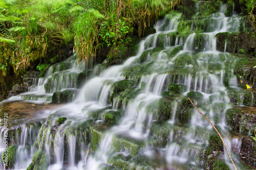 wodospad-w-parku-cladagh-glen-irlandia-polnocna