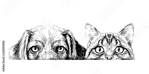 Wall sticker. Graphic, artistic, sketch drawing of a cat and a dog looking at a table on a white background.