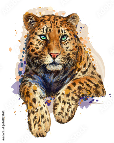 Valokuva  Color, graphic, artistic portrait of a leopard in a picturesque style on a white background with splashes of watercolor