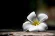 Frangipani flowers, the symbol of Thai spa, represents a refreshing, gentle and relaxing.
