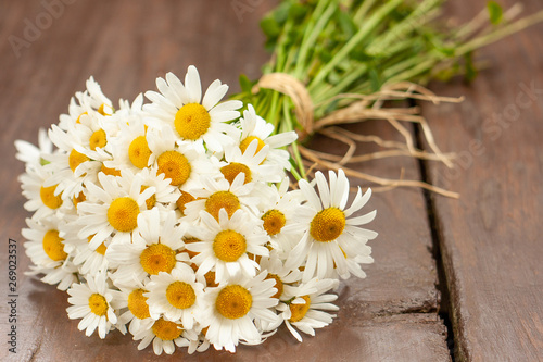 Fototapeta A white and yellow bouquet of freshly picked wild daisy flowers from a natural meadow and garden tied with a natural decorative raffia string