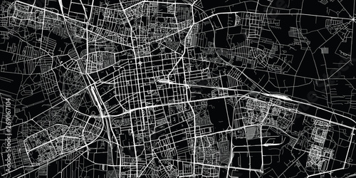 Fotografie, Obraz Urban vector city map of Lodz, Poland