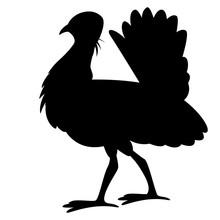 Bustard .vector Illustration, Black Silhouette ,profile