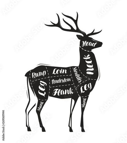 schemat-tuszy-jelenia