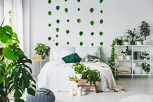 White Bedroom Interior With King Size Bed With Pillows And Blanket, Urban Jungle And Green Leafs On The Wall