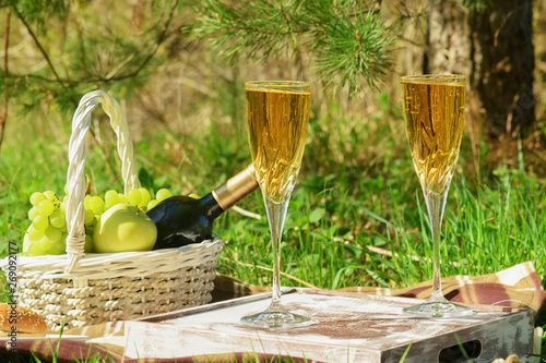 Romantic Picnic Dinner in Pine Forest Side View. Hamburger, White Wine in Glasses, Wicker Basket with Bottle of Beverage, Grape and Apples. Set of Eating Food for Rest at Nature Composition