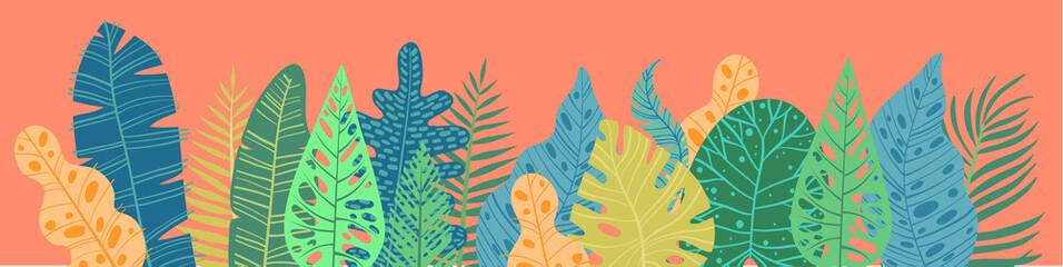 Tropical plants, leafs. Summertime nature objects. Jungle, Hawaii, Tropics. F...
