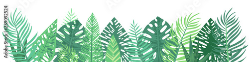 Vector horizontal tropical leaves banners on white background. Exotic botanical design for cosmetics, spa, perfume, health care products, aroma, wedding invitation. Best as web banner, illustration