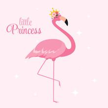 Beautiful Little Princess Pink...