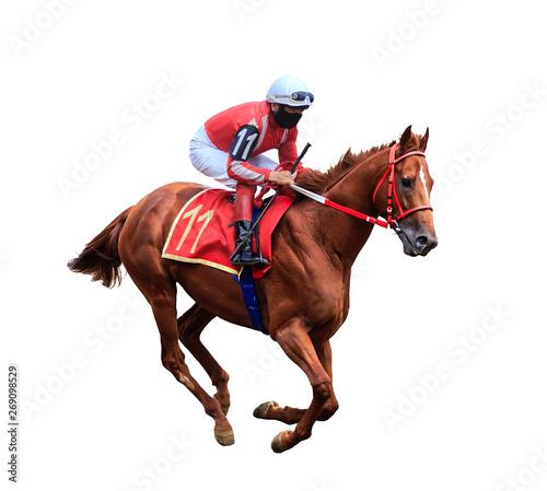 Canvas Print horse racing jockey isolated on white background