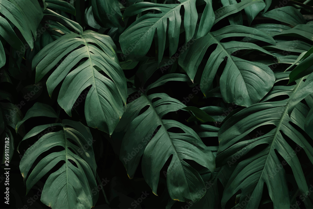 Fototapety, obrazy: Nature pattern background