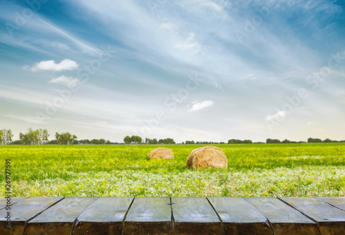Stickers pour porte Inde table with field