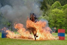 Horse Riding Through The Fire And Flames