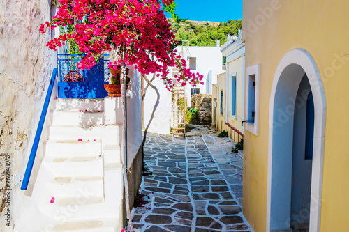 Scenic alley with beautiful pink bougainvillea flowers and yellow house walls. Colourful Greek street in Lefkes, Paros island