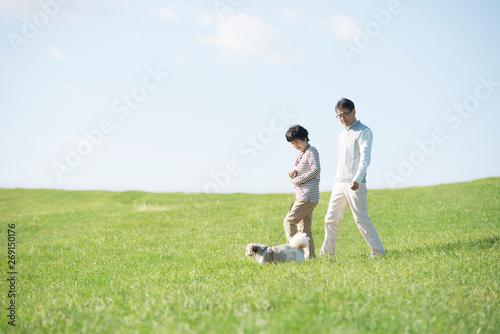 Fotomural 草原で犬の散歩をするシニア夫婦