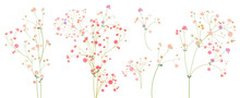 Twigs Of Gypsophile Paniculata. Pink, White, Red Tiny Flowers, Buds, Green Leaves. Delicate Ramules For Bouquets. Panoramic View, Botanical Illustration In Watercolor Style, Horizontal Pattern, Vector