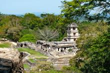 Palenque Ruins, Ancient Maya City In Jungle Of Mexico