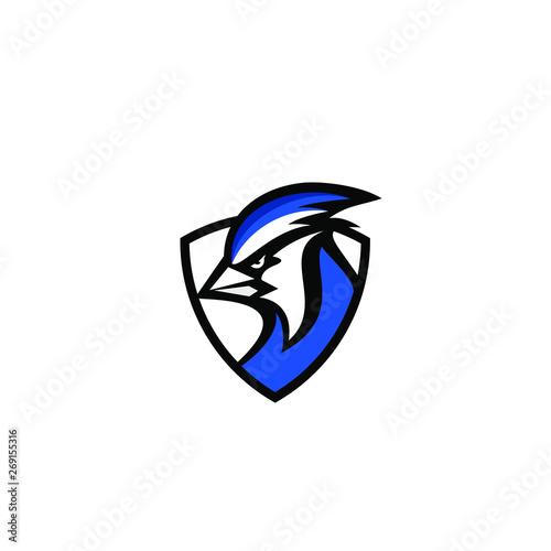 Photo blue jay bird color head mascot logo icon designs vector illustration