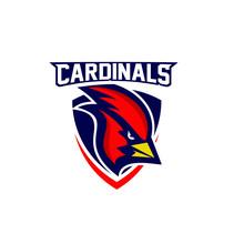 Cardinal Bird  Red Color Head ...