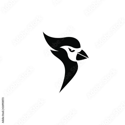 In de dag Uilen cartoon cardinal bird head mascot white color on black background logo icon designs vector illustration