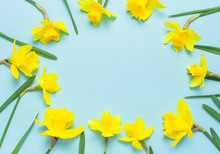 Spring Floral Background. Fram...