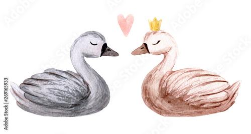Obraz na plátně Watercolor swan