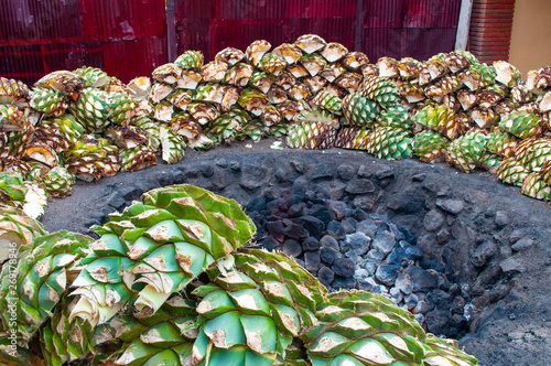Baking blue agave hearts in ground oven pit, tequila factory #269178946