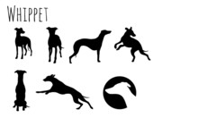 Whippet Icon
