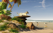 One A Tropical Beach, A White Tiger Rests On A Rocky Outcropping Out In The Sky, A Day Time Moon Has Risen And The Tiger Seems To Be Watching It. 3D Rendering