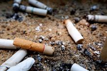 Close-up Image Of Smoked Cigar...