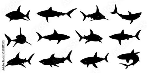 Fototapeta  shark silhouette