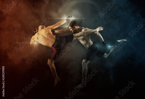 Cuadros en Lienzo MMA boxers fighters fight in fights without rules
