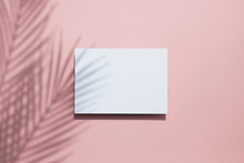 Tropical Palm Leaf Shadow On A White Card Frame. Exotic Summer Background.