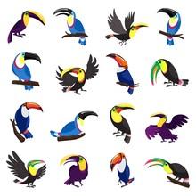 Toucan Icons Set. Cartoon Set Of Toucan Vector Icons For Web Design