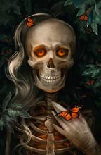 Illustration Of  A Skeleton Girl