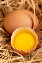 Cracked Egg On Straw
