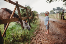 Little Boy Wearing A Sun Hat Looking At Horse At Farm By The Fence