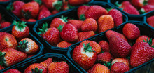 Strawberries In Containers. Harvest Of Berries. Tasty And Healthy Food.