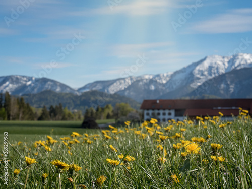 Beautiful Bavarian landscape with alps in the background