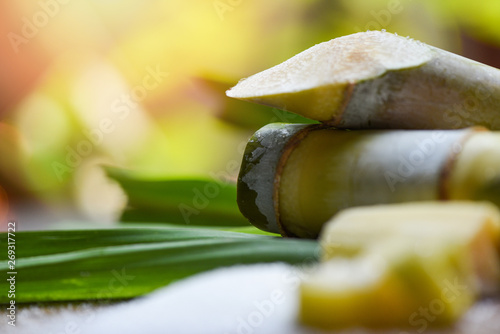 Fotografering White sugar and sugar cane on wooden  table and nature